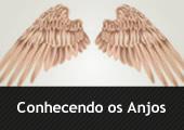 Asas, com a inscrição Conhecendo os Anjos
